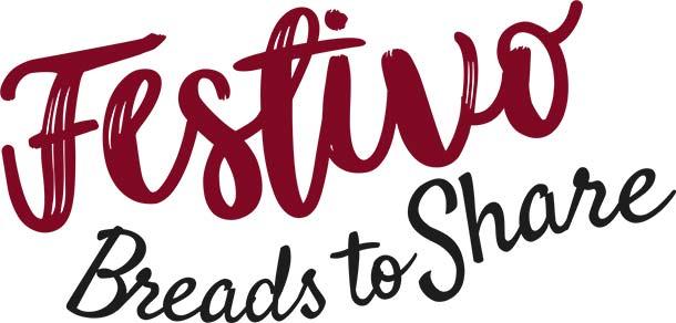 Festivo Logo Productpage